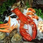 fresh seafood - shellfish
