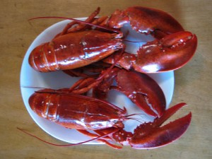 Boiled Lobsters