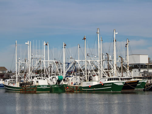 Cape May NJ fishing boats