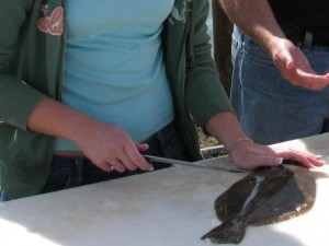 how to cut up flounder