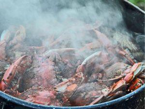 crab steamer