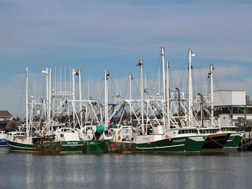 Cape May NJ fishing boats