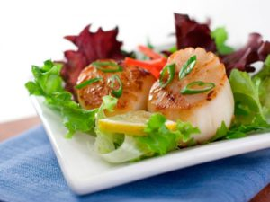 cooked sea scallops